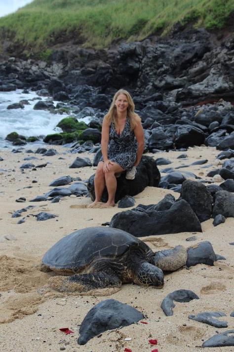 maui, hawaii, green sea turtle, east coast maui, endangered species