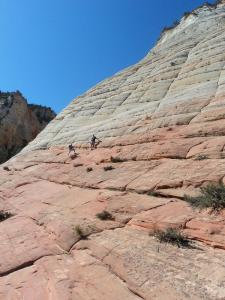Zion National Park, checkerboard mesa