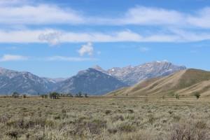 Grand Tetons, Yellowstone National Park, geysers, volcano, hot springs, wildlife, bison, elk, hiking, trails