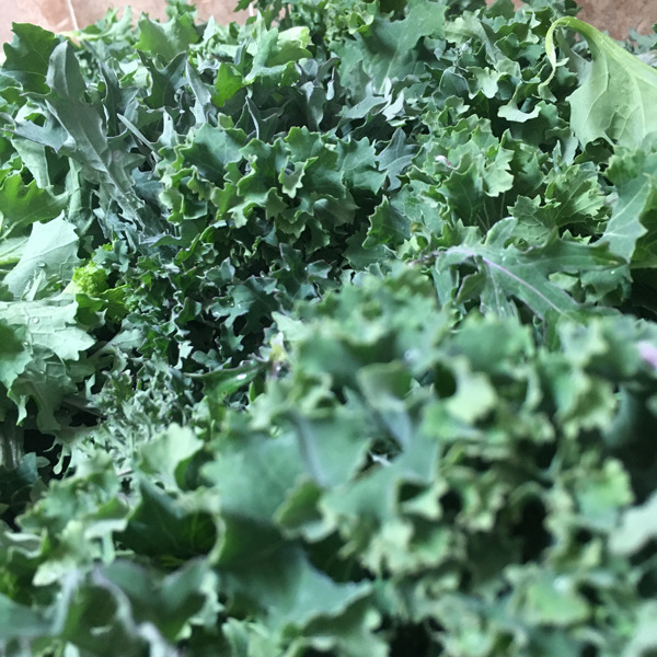 eating organic, healthy eating